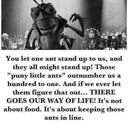 A Bug's Life quote
